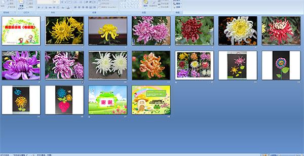 幼儿园大班多媒体美术活动:美丽的菊花(卷纸画)