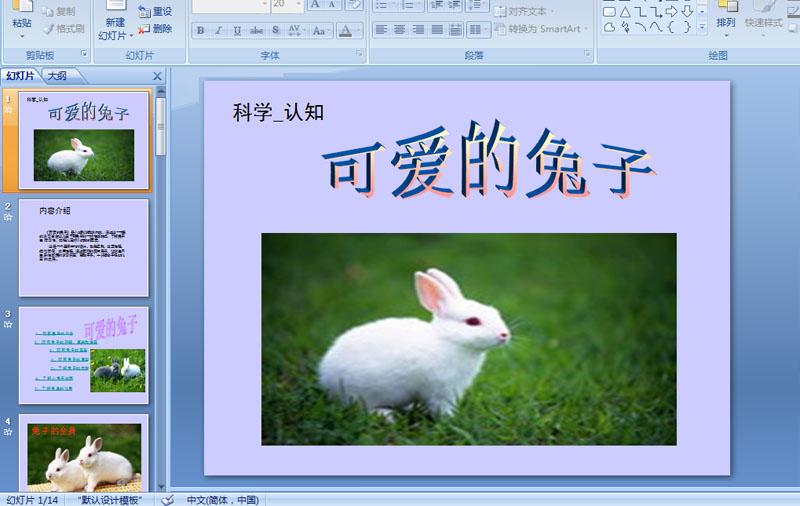 幼儿园小班科学:可爱的兔子