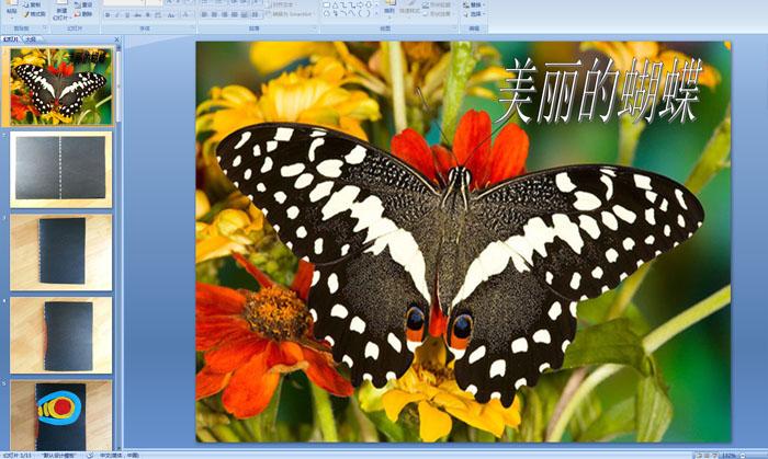 幼儿园中班美术活动:蝴蝶(对称印画)