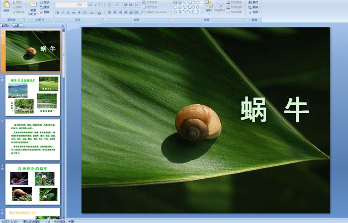 幼儿园中班科学活动《蜗牛》ppt课件
